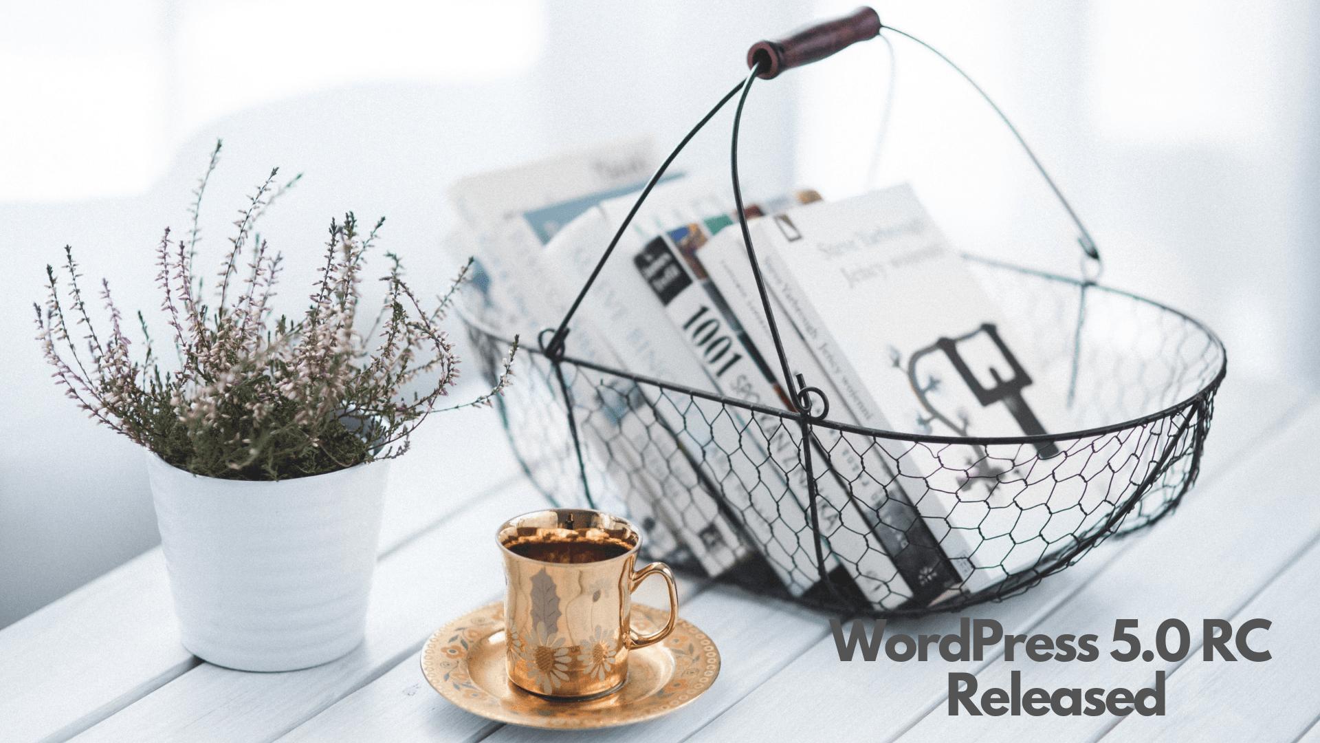 WordPress 5.0 RC released!