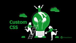 Add Custom CSS to Your WordPress Site
